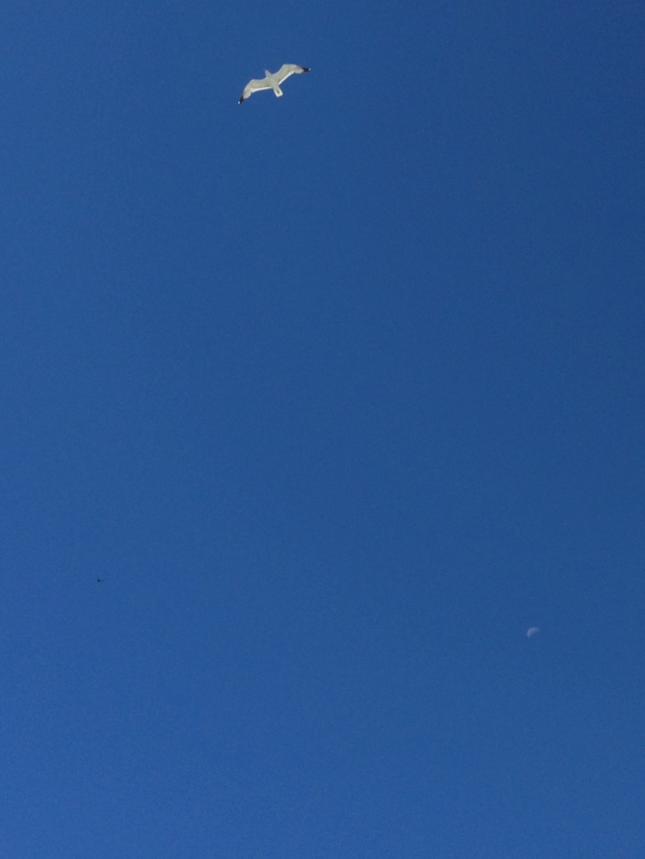 2013-06-01 11.27.01 HDR